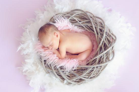 2016中国母婴电商将达3000亿 网红妈妈成趋势